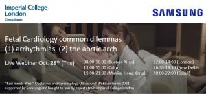 Webinář: Fetal Cardiology common dilemmas (1) arrhythmias (2) the aortic arch